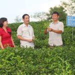 Những điều cơ bản về hồ sơ vay vốn quỹ hỗ trợ nông dân